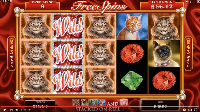 Pretty Kitty Features a Free Spins Bonus Game with Expanding Wilds