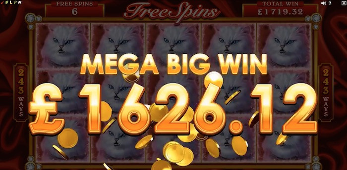 The Pretty Kitty Slot features a Mega Big Win Streak