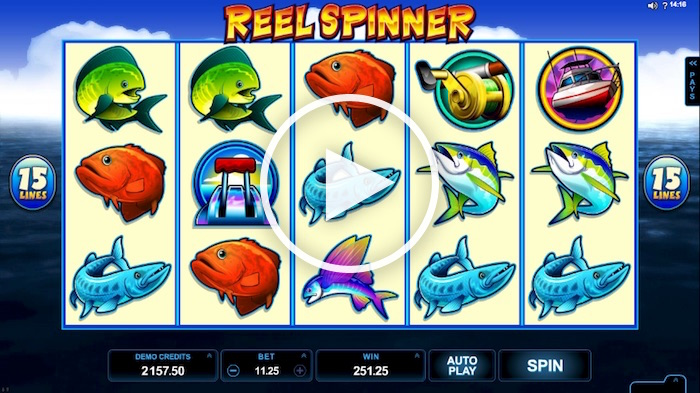 Screenshot of Reel Spinner Online Slot
