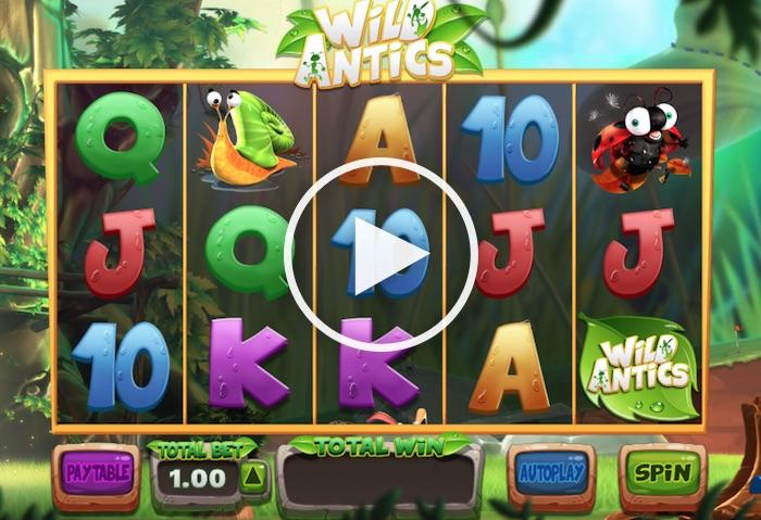 Screenshot of Wild Antics Online Slot