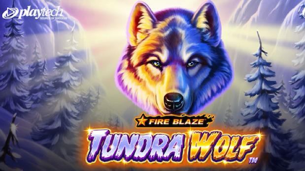 Fire blaze tundra wolf online slot